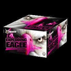 Exploding Eagle