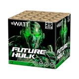 Future Hulk